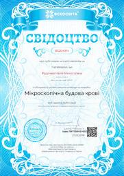 Свідоцтво про публікацію матеріала №BS204914
